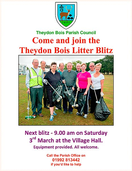 Litter Pick March 3rd Poster