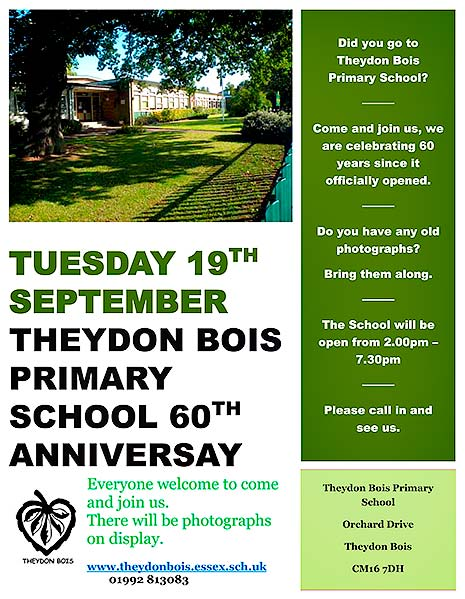 Primary School 60th Anniversay Poster