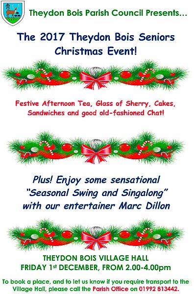 Theydon Seniors Xmas Event poster