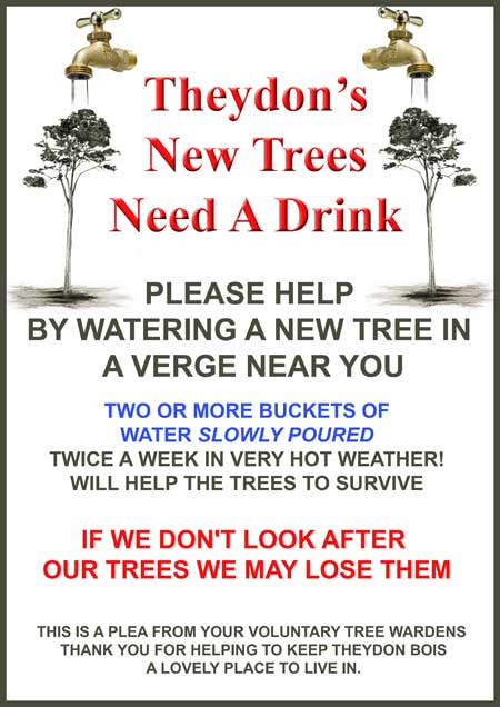 Thirsty Street Trees Poster