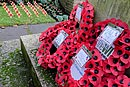 Theydon Bois Remembrance Sunday 2014