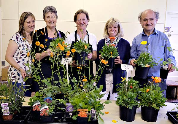 St Marys Plant Sale 2015