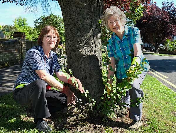 Tree Wardens Jane Turner & Sue Warren